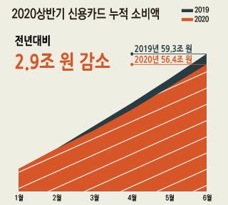 코로나19가 바꾼 서울시민의 소비 (2020 상반기)