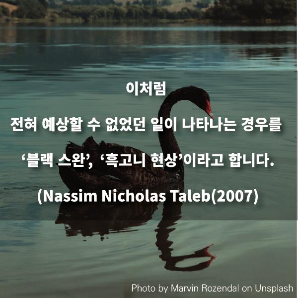 이처럼 전혀 예상할 수 없었던 일이 나타나는 경우를 '블랙 스완',     '흑고니 현상'이라고 합니다.(Nassim Nicholas Taleb(2007))