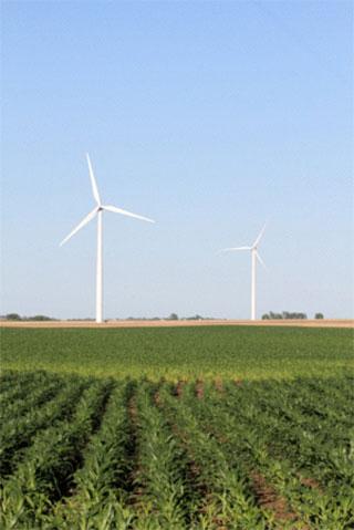 [그림 1] 일리노이州 풍력 발전소 전경