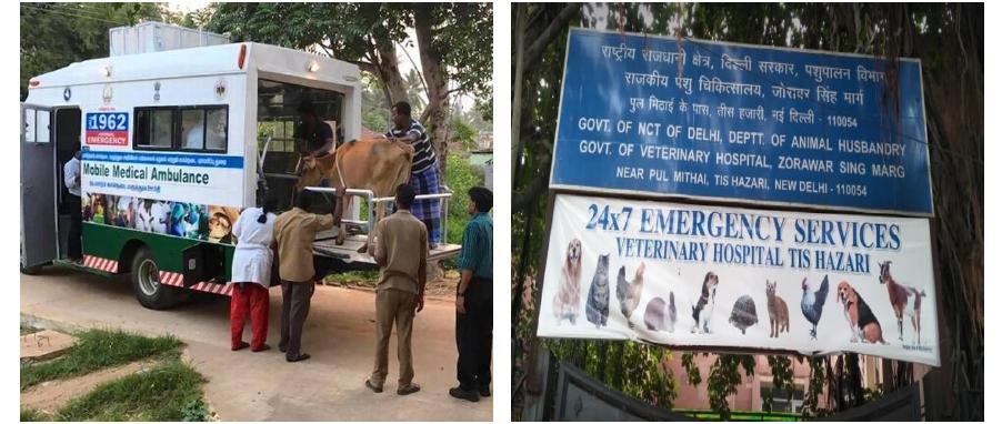 [사진 1] 동물 전용 구급차 모습, [사진 2] 24시간 동물 진료소 안내문