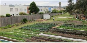 [그림 1] 샌프란시스코시 유휴사유지 활용 농장